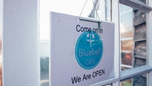 Join us as The  Bluebell Cafe, Woodland Walk & Playground Reopen on Monday!
